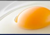 Uncooked Egg