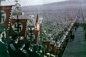 how did the NAZI's rise to power in german