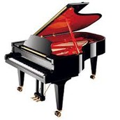 פסנתר כנף