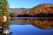 New Hampshire Overall