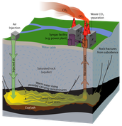 How does Coal effect the environment?