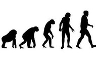 Why is this a misconception about the theory of evolution?