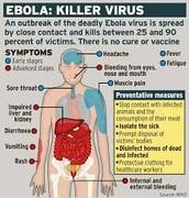 ebola virus symptom