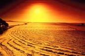 A desert in a sun rides.