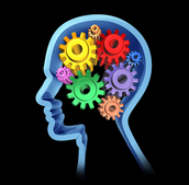 In Gifted Class students must use their brain!