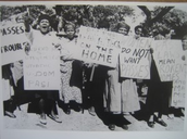 ANCWL Pass book protest