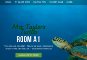Class Website taylor4turtles.weeblly.com