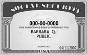 The Social Security Card