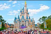 Walt Disney World/ Orlando Florida; Fun Site