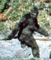 Clip from famous video of Bigfoot