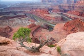 Still looking for things to do in Moab?