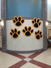 Paws for PRIDE Assembly. . .
