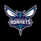 Charlote Hornets NBA Team