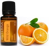 Become A Wholesale Member This Month and Receive a FREE Wild Orange Oil !!