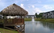 Relax by our ponds under the shade of our tiki hut!