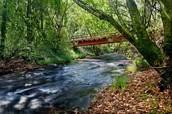 The Walton River