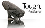 Gorilla Glass Advertisement