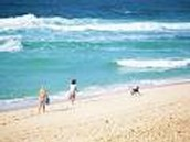 this summer i am going to go the beach