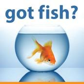 SAVE LIBERTY'S FISH