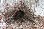 how to build a shelter out of sticks and mud