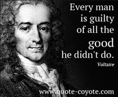 A quote from Voltaire