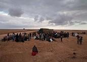 Effect on Syria