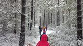 Invierno Caminata