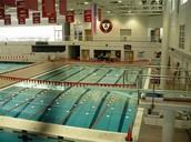 la piscina de Barney