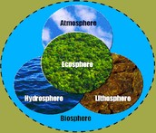 Why is the biosphere important?