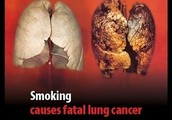 facts about cigarettes