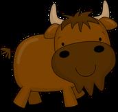 Boletín de los búfalos tenaces