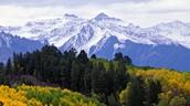 The Mountain Biome Summary