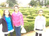 We strolled through Washington's gardens.