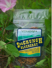Seacrunch- Blue Berry and Dark Chocolate- $20.00