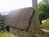 Medieval homes