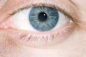 eye of goodness