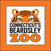 Welcome to the Beardsley Zoo