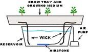 Hyroponics definition
