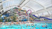 We have some of the biggest water slides in the world!