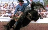 Rodeo Lessons