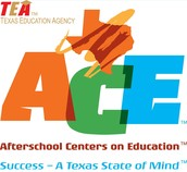 21st Century ACE Before and After School Programs