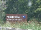 The Alligator River National Wildlife Refuge