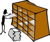 Organzation