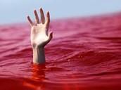 מכת דם