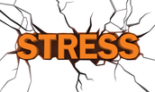Definition of Stress/Difference Between Good and Bad Stress
