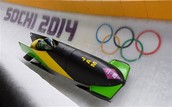 Jamaican bobsledding team 2014