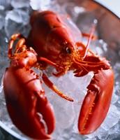 Sea-Food...
