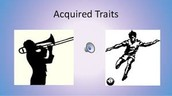 Acquired Traits are...