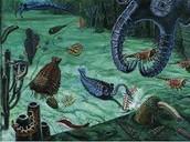 Dominant Organisms