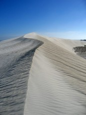 The sand dunes on Moreton island and the desert on the island